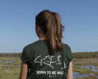 Animaux sauvages : Stage réserve naturelle