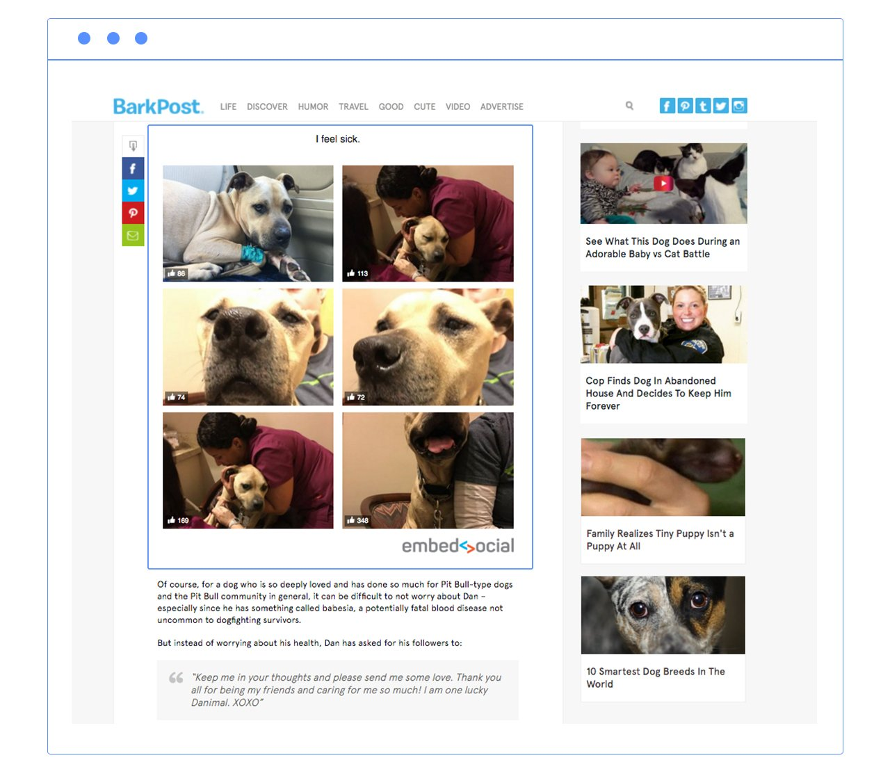 barkpost facebook album plugin