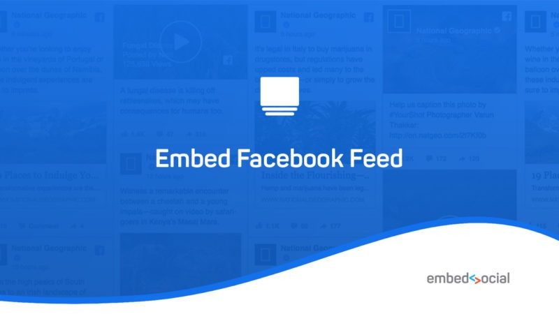 google and facebook reviews widget