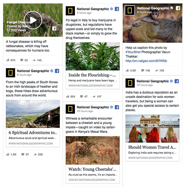 embed facebook feed
