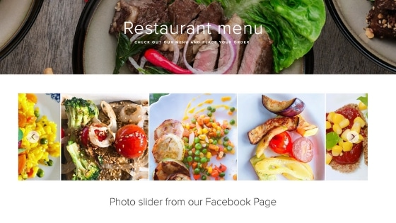 facebook photo plugin