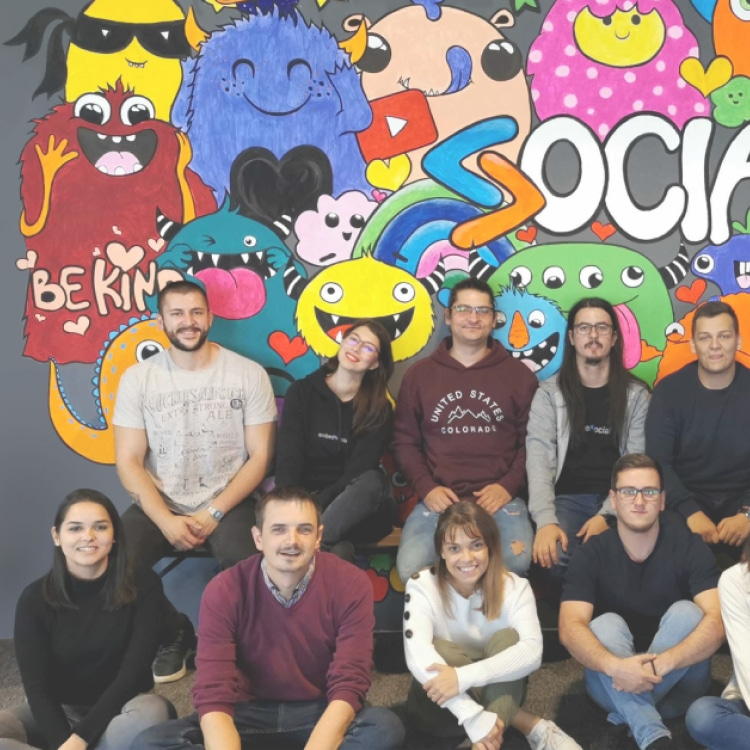 embedsocial team