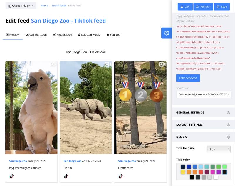 TikTok widget for website