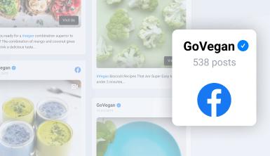 facebook feeds widget