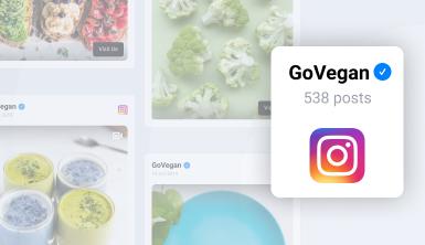 instagram album widget