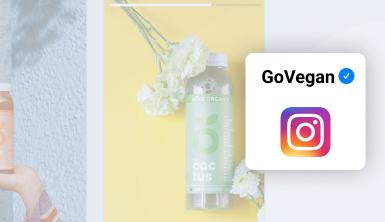 instagram stories widget